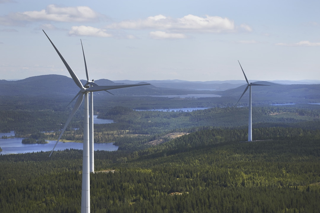 Windmills in forest