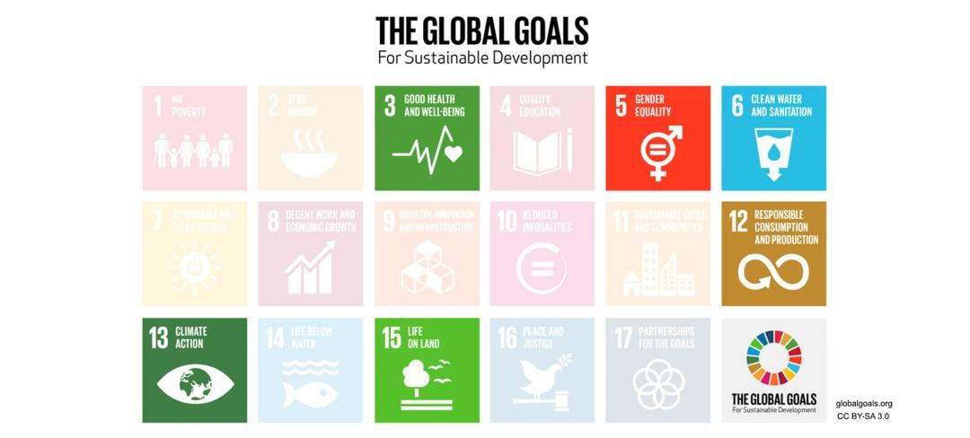 Essity-SDG-approach.jpg