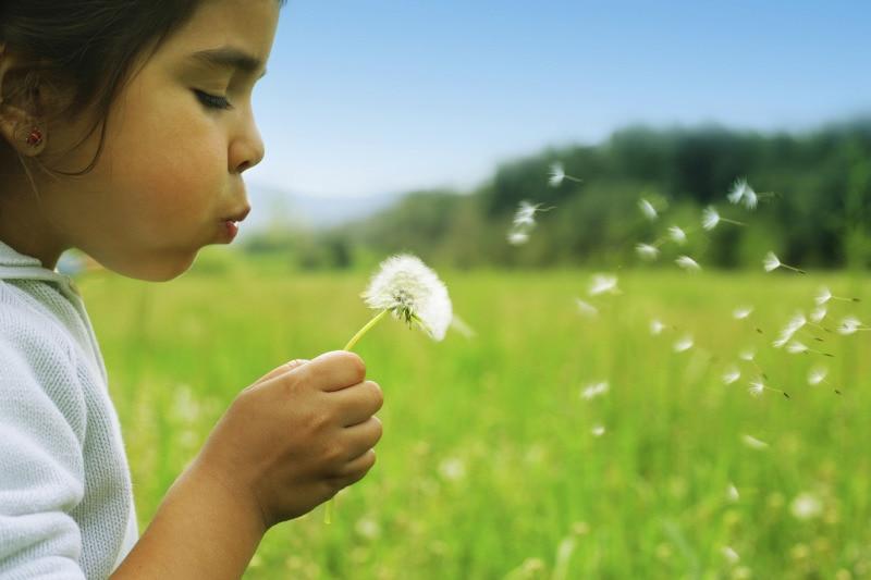 Sustainability Report 2012.jpg